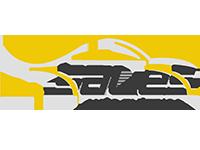 Auto Elétrica Sales